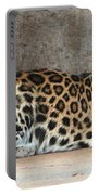 The Leopard Portable Battery Charger