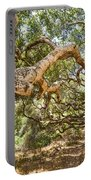 The Life Of Oaks - The Magical Trees Of The Los Osos Oak Reserve Portable Battery Charger