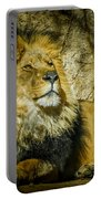 The Lion Portable Battery Charger