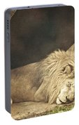 The Lion Sleeps Tonight Portable Battery Charger