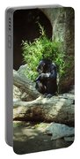 The Lone Chimp Portable Battery Charger