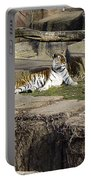 The Lounging Tiger 2 Portable Battery Charger