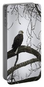 The Majestic Eagle Portable Battery Charger
