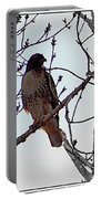 The Majestic Hawk Portable Battery Charger