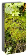 The Miniature World Of The Moss Portable Battery Charger