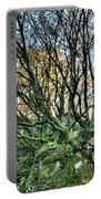 The Mossy Creatures Of The  Old Beech Forest 8 Portable Battery Charger