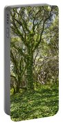 The Mysterious Forest - The Magical Trees Of The Los Osos Oak Reserve. Portable Battery Charger