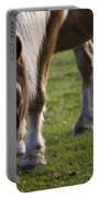 The New Forest Pony Portable Battery Charger