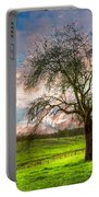 The Old Apple Tree At Dawn Portable Battery Charger