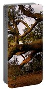 The Old Tree At The Ashley River In Charleston Portable Battery Charger by Susanne Van Hulst