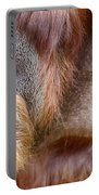 The Orangutan Album  Portable Battery Charger