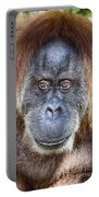 The Orangutan Album V4 Portable Battery Charger