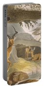 The Pallah, 1804-05 Portable Battery Charger