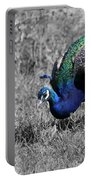 The Peacock Portable Battery Charger