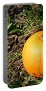 The Perfect Pumpkin In The Patch Portable Battery Charger