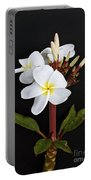 The Plumeria Portable Battery Charger