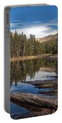 The Pond At Dana Meadow Portable Battery Charger