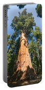 The President - Very Large And Old Sequoia Tree At Sequoia National Park. Portable Battery Charger