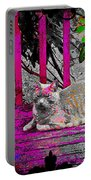 The Psychedelic Cat Portable Battery Charger