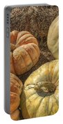The Pumpkins Of Autumn Portable Battery Charger
