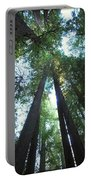 The Redwood Giants Portable Battery Charger