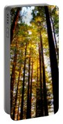 The Redwoods Of Florence Keller Park Portable Battery Charger