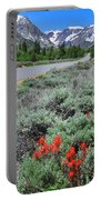 The Road Into Lundy Canyon Portable Battery Charger