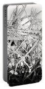 The Roots In Black And White Portable Battery Charger by Lisa Russo
