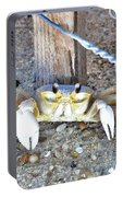 The Sandcrab - Seeking Shelter Portable Battery Charger