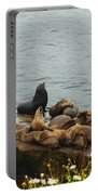 The Sea Lion And His Harem Portable Battery Charger by Mary Machare