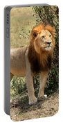 King Of The Savannah Portable Battery Charger