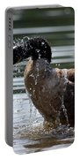 The Shake Off - Canadian Goose Portable Battery Charger