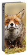 The Smiling Fox Portable Battery Charger