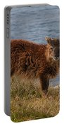 The Soay Sheep  Portable Battery Charger