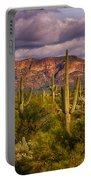 The Sonoran Golden Hour  Portable Battery Charger
