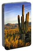The Southwest Golden Hour  Portable Battery Charger