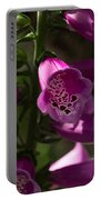 The Splendor Of Foxgloves Portable Battery Charger