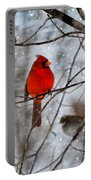 Blue Eyes In The Snow Cardinal  Portable Battery Charger