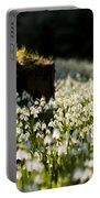 The Stump And The Snowdrops Portable Battery Charger by Anne Gilbert