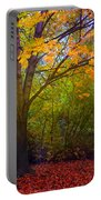 The Sunoka Tree Portable Battery Charger
