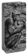 The Thinker Portable Battery Charger