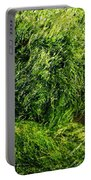 The Walls Are Alive - Seaside Abstract Portable Battery Charger