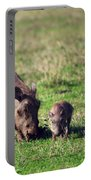 The Warthog Family On Savannah In The Ngorongoro Crater. Tanzania Portable Battery Charger