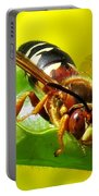 The Wasp Portable Battery Charger
