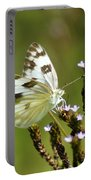 The Western White Portable Battery Charger