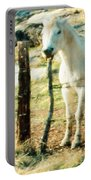 The White Horse Portable Battery Charger