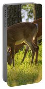 The Whitetail Deer Of Mt. Nebo - Arkansas Portable Battery Charger