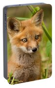 The Wild Pup Portable Battery Charger