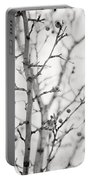 The Winter Pear Tree In Black And White Portable Battery Charger