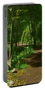 The Wooded Path... Portable Battery Charger